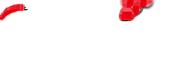 Logo | Shizhan Truss - shizhantruss.com